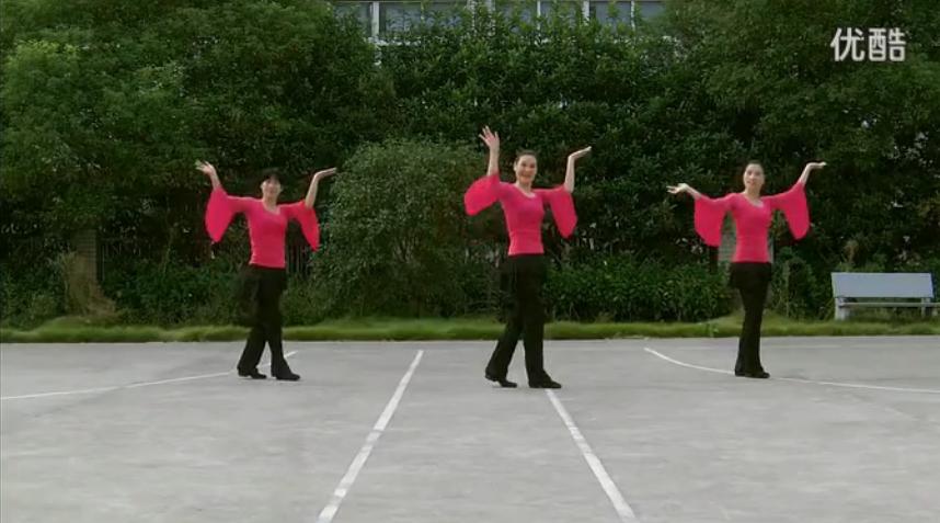 《山里红》广场舞教学 广场舞蹈视频大全